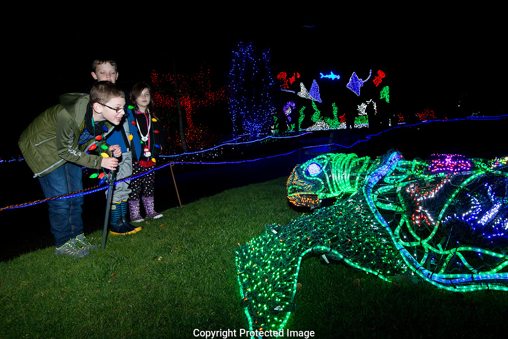 Zoolights opening evening at Point Defiance Zoo and Aquarium, Friday, Nov. 24, 2017. (Photo/John Froschauer)