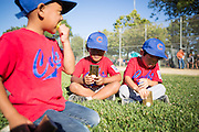 Jonah Paguyo, 5, left, eats a Ring Pop as T-Ball Cubs teammates Nathan Pagba, 6, center, and Leo Chu, 6, look at their trophies during Little League closing ceremonies at the Milpitas Sports Center on June 13, 2013. (Stan Olszewski/SOSKIphoto)