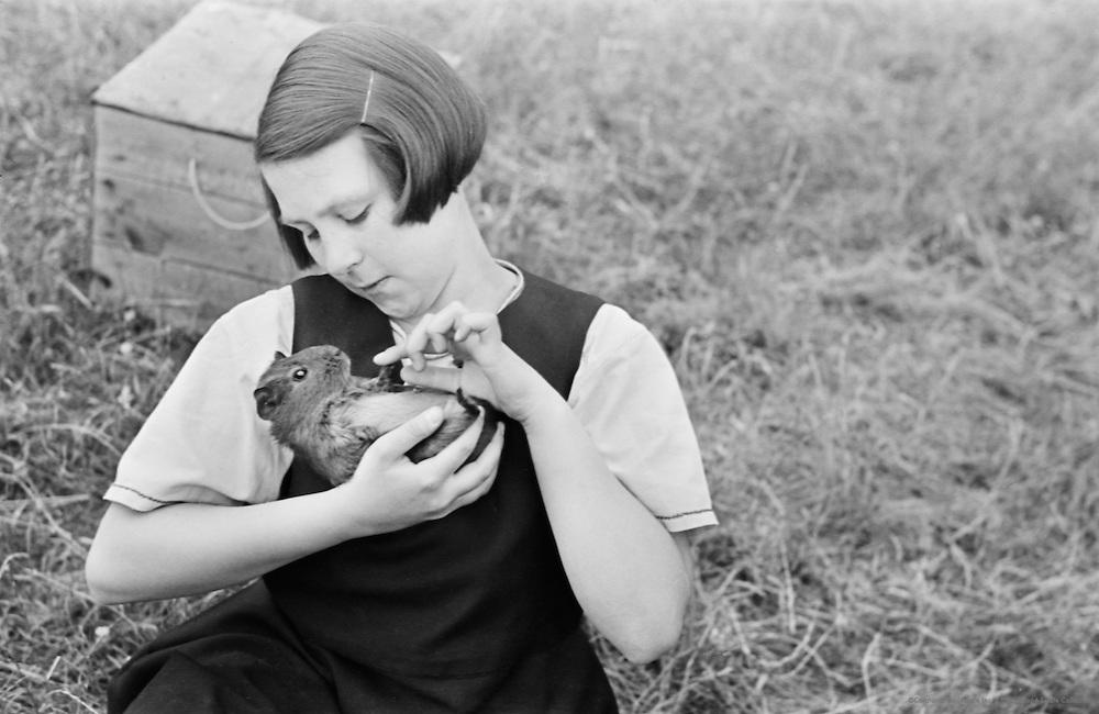 Looking After Pets, Roedean School, Brighton, England, 1935