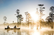 Two men paddle in a canoe at sunrise in a beautiful cypres swamp at Cheraw State park in South Carolina.