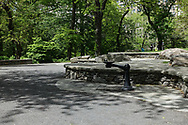 the top of Summit Rock in Central Park.