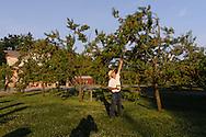 BREEZE HILL FARM & PRESERVE.PECONIC, Long Island, New York
