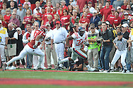 at Reynolds Razorback Stadium in Fayetteville, Ark. on Saturday, October 23, 2010.
