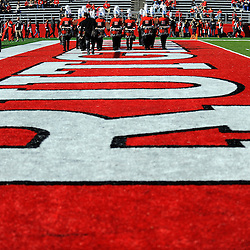 The Rutgers marching band performs during American Athletic Conference Football action between Rutgers and Cincinnati on Nov. 16, 2013 at High Point Solutions Stadium in Piscataway, New Jersey.
