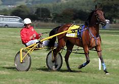 2006 Races