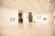 Bank of America. MFAH. Van Gogh exhibit.