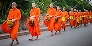 Monks after receiving daily alms at dawn in Luang Prabang (Laos).