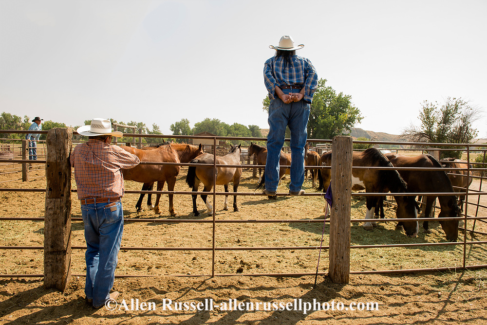 Brothers, Richard Henry and Jim Real Bird, Real Bird Bucking Horses, look over their horses, Crow Fair Rodeo, Montana