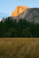 Half Dome meadow in Yosemite National Park California USA.