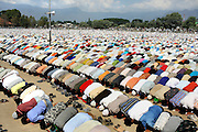 On the 22nd August 2008 an estimated 350,000 Kashmiri's marched to the Eidgha communal ground in Srinagar. Local Kashmiri's said they had never witnessed anything like it in their lifetime. .Tens of thousands of kashmiri men pray in the Eidgha communal ground...