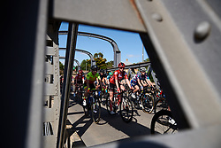 Liane Lippert (GER) in the bunch on Stage 2 of 2020 Santos Women's Tour Down Under, a 114.9 km road race from Murray Bridge to Birdwood, Australia on January 17, 2020. Photo by Sean Robinson/velofocus.com
