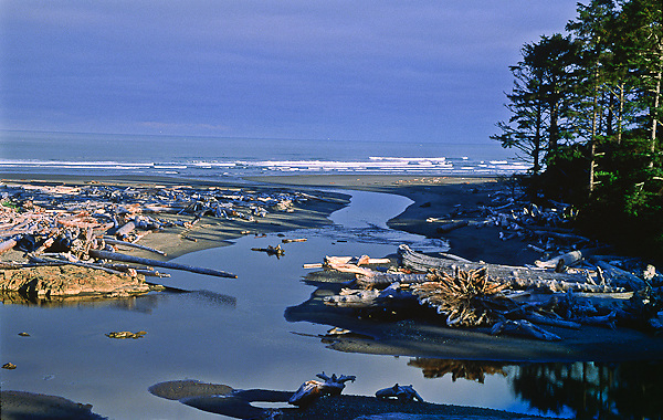 Kalaloch Creek crosses Kalaloch Beach and enters the Pacific Ocean.  Olympic National Park, Washington, USA