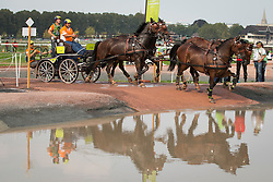 Theo Timmerman, (NED), Boy, Dani, Draco, Mister, Rodina - Driving Marathon - Alltech FEI World Equestrian Games™ 2014 - Normandy, France.<br /> © Hippo Foto Team - Dirk Caremans<br /> 06/09/14