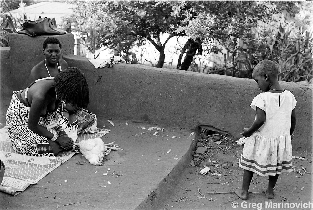 A child watches as a chicken is killed by being bitten by Sowetan Cookie Kashane at her initiation as Ndau medium / diviner at Dolly Village, Venda, South Africa Feb 4, 1991. (Greg Marinovich)