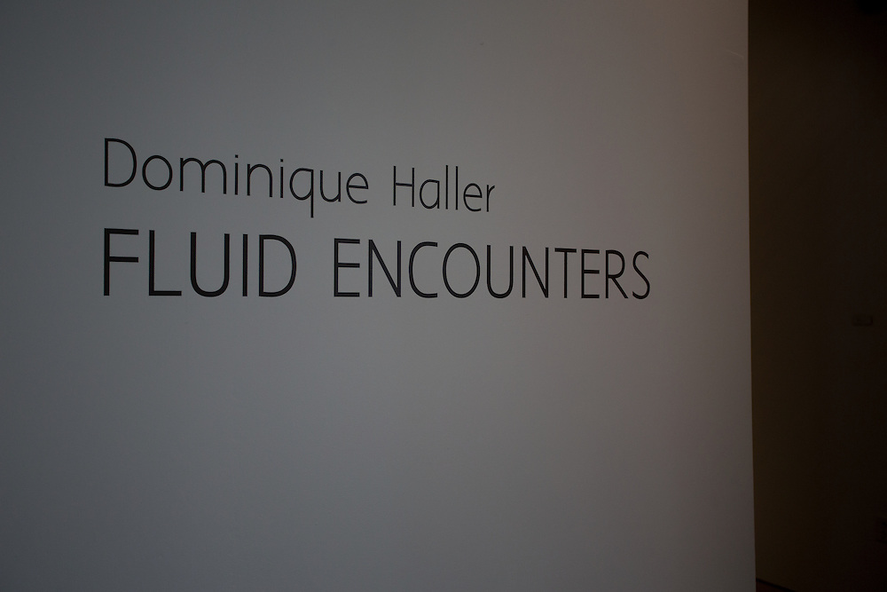 Dominique Haller. Master of Arts Exhibition