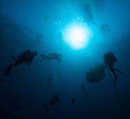 "Bajo de la Campana--Divers are cast in silhouette as they move a massive boulder across the site.  On this dive: Mark Polzer, Juan Pinedo, David Silvestre, Nicolas De Montis, Francisco ""Kiko"" Bunuelas and Josue Mata Mora."