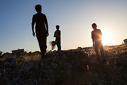 Syria.<br /> A Shepherd and his young friends looks at the photographers camera guiding a livestock trough fields in the countryside of Idlib, Syria,<br /> 15th June 2013<br /> Picture by Daniel Leal-Olivas / i-Images