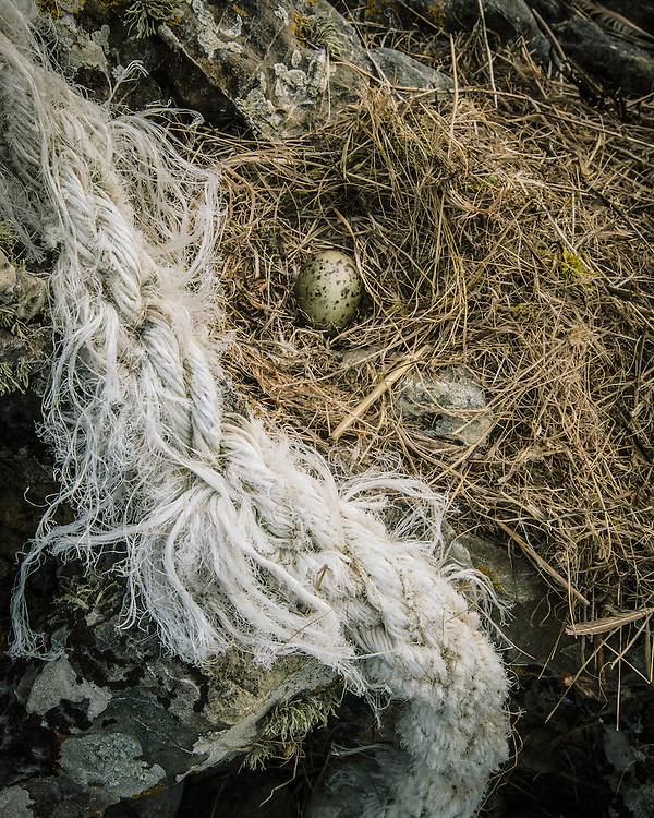 Gulls Egg, Laig bay, Isle of Eigg