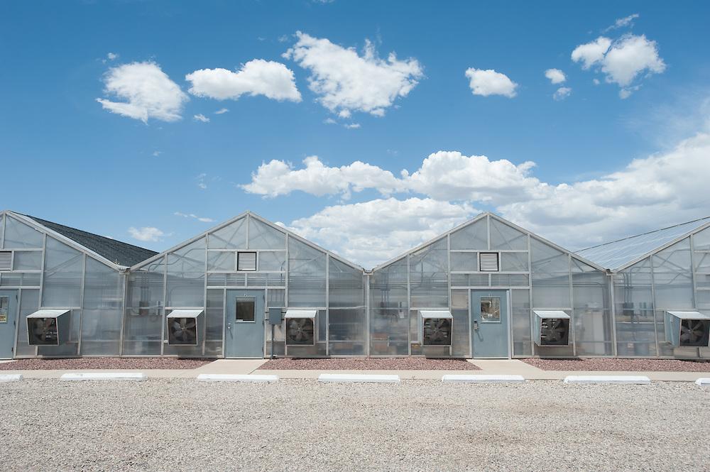 Row of Greenhouses