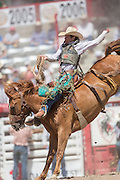 Saddle Bronc rider Doug Aldridge hangs on to Pegasus at the Cheyenne Frontier Days rodeo at Frontier Park Arena July 24, 2015 in Cheyenne, Wyoming. Frontier Days celebrates the cowboy traditions of the west with a rodeo, parade and fair.