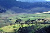 Sri Lanka - Hill Country