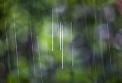 The Effect of Shutter Speed on Falling Rain Set 3-#4