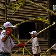 PALMEROS OF CHACAO / PALMEROS DE CHACAO<br /> Photography by Aaron Sosa<br /> Caracas - Venezuela 2010<br /> (Copyright © Aaron Sosa)