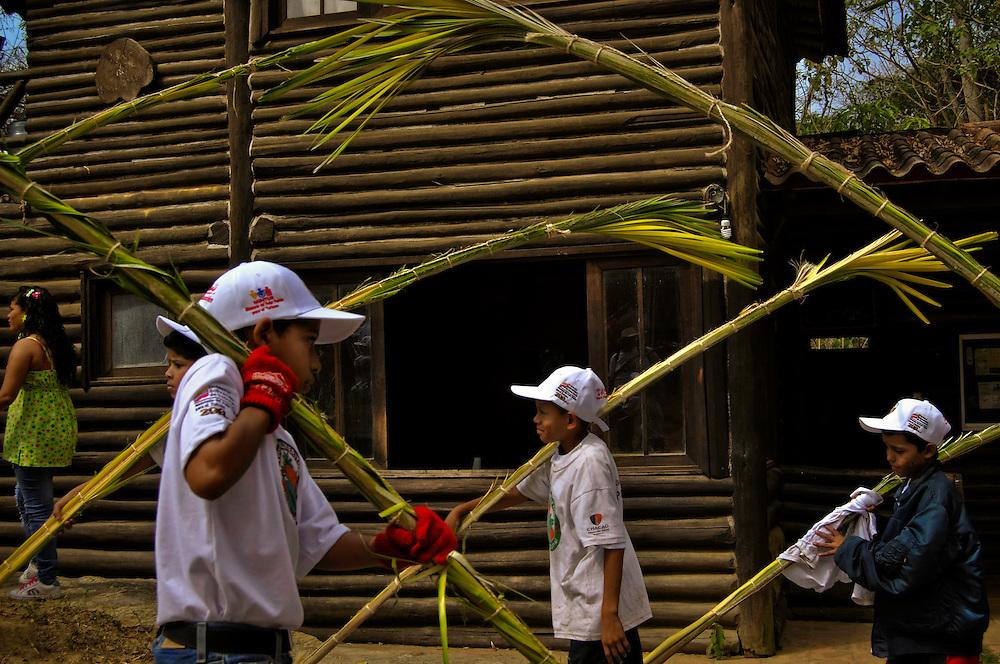 PALMEROS OF CHACAO / PALMEROS DE CHACAO<br /> Photography by Aaron Sosa<br /> Caracas - Venezuela 2010<br /> (Copyright &copy; Aaron Sosa)