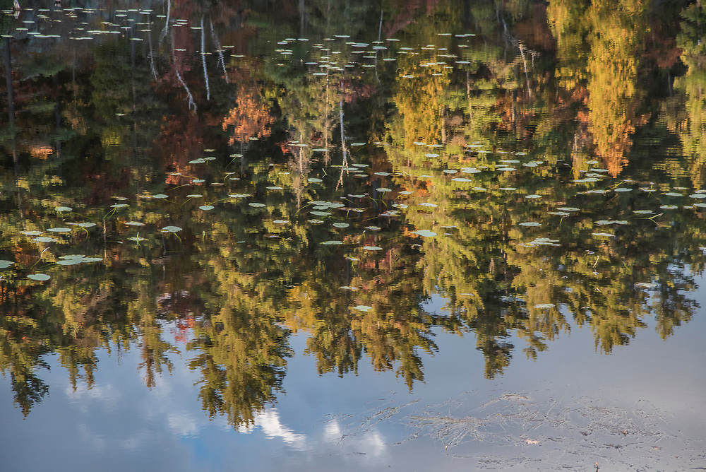 Trees reflect in a pond along the Iron Ore Heritage Trail, a multiuse recreation trail connecting communities in Marquette County on Michigan's Upper Peninsula.