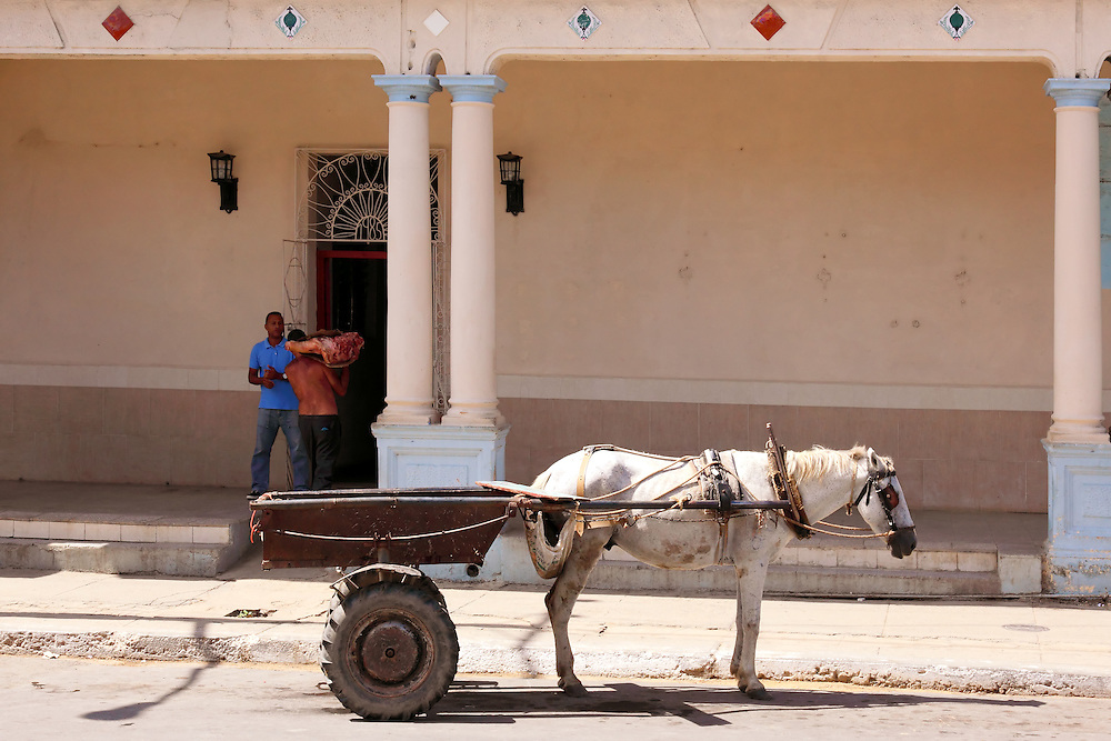 Horse and cart in San Juan y Martinez, Pinar del Rio, Cuba.