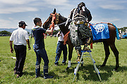 Minami-Soma, Fukushima prefecture, July 25 2015 - Kazuhiko ITO at the Sunday race of Nomaoi, a festival of samurai riding horses.<br /> The Soma nomaoi is said to be a 1000-year-old traditional festival. It was held in 2011, a few months after the nuclear disaster, but only a few local horses were available.