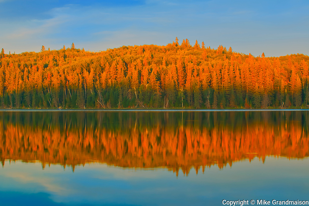Boreal forest reflected in Spray Lake at sunset<br />