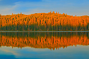 Boreal forest reflected in Spray Lake at sunset<br />Duck Mountain Provincial Park<br />Manitoba<br />Canada