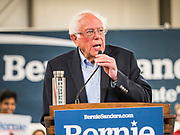 08 SEPTEMBER 2019 - AMES, IOWA: US Senator BERNIE SANDERS (Ind-VT) speaks at Iowa State University in Ames. Sanders talked about his plans to public colleges and universities free. Sanders is campaigning to be the Democrats' nominee for the 2020 US Presidential election. Iowa holds the first in the country selection contest with state caucuses on Feb. 3, 2020.       PHOTO BY JACK KURTZ