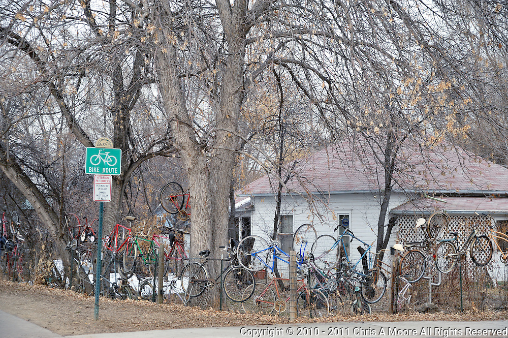 """A neighbor next to a bike route in Loveland, Colorado decorates the yard with cast off or damaged bicycles.  It creates an interesting art piece next to the """"Bike Route' sign."""