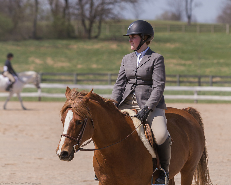 Image from the Elmington Farm Hunter Horse Show held at Elmington Farm on April 14, 2018