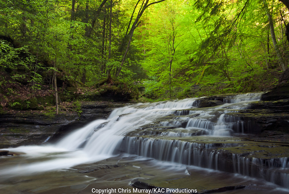 Waterfall in Fillmore Glen State Park, New York, USA