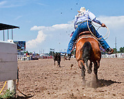 Matt Shiozawa charges out of the box after his calf during the calf roping event at the 2009 Cheyenne Frontier Days.