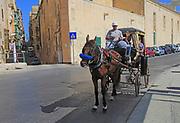 Horse and cart tourist ride on streets of Valletta, Malta