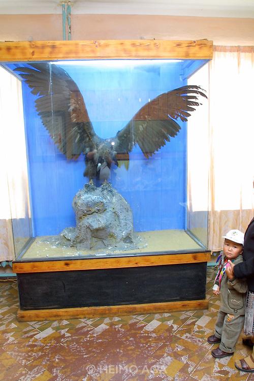 ULAN BATOR, MONGOLIA..08/22/2001.Museum of Natural History.  Black vulture..(Photo by Heimo Aga)