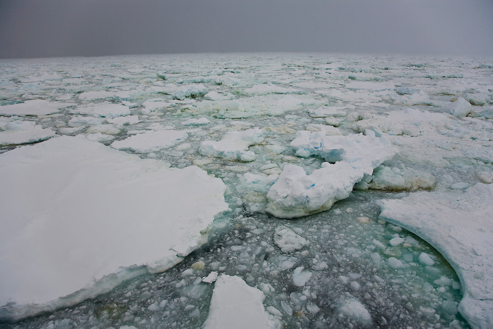February 7th 2007. Southern Ocean. Greenpeace ship MY Esperanza reaches the sea ice edge near Antarctica.