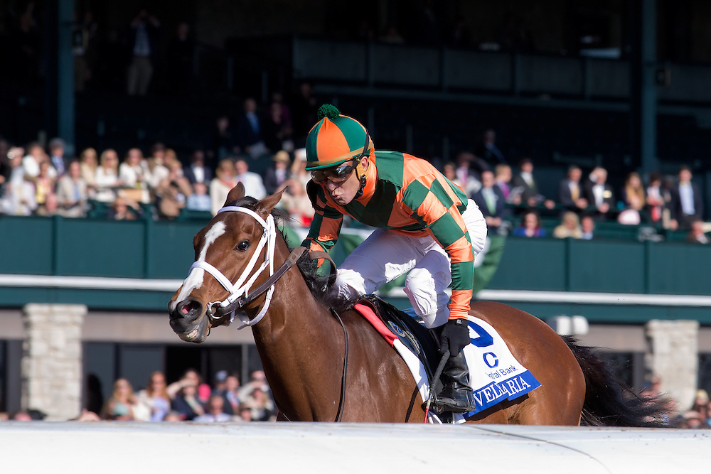 Keeneland Spring Meet 2015<br /> The 2015 Central Bank Ashland (G1) won by Lovely Maria<br /> Owner Brereton Jones<br /> Trainer Larry Jones<br /> Jockey Kerwin Clark