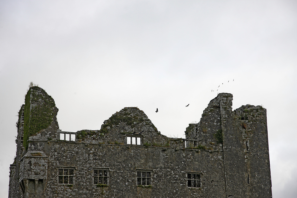 Ruin and birds,  Ireland Burren region