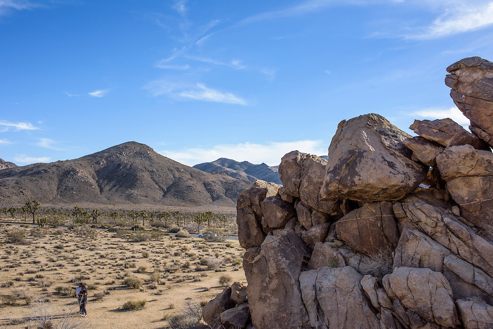 Joshua Tree, California - March 14, 2015:<br /> <br /> CREDIT: Matt Roth