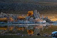 090-P101947<br /> <br /> Mono Lake Tufa State Reserve<br /> &copy; 2018, California State Parks.<br /> Photo by Brian Baer