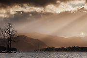 A silhouetted tree against a sunlit Hallin Fell, with Ullswater in the foreground.