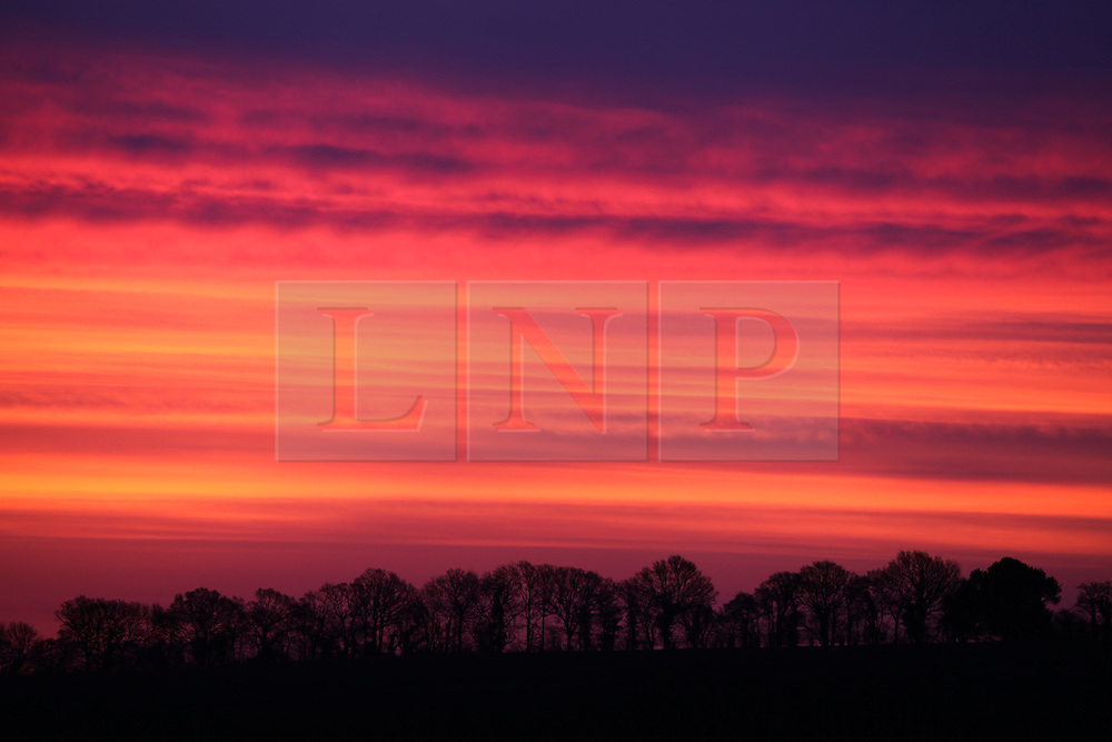 © Licensed to London News Pictures. 24/02/2014. Basingstoke, Hampshire, UK. A vivid red sky over Basingstoke in Hampshire this morning, 24th February 2014. Photo credit : Rob Arnold/LNP