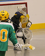 Lacrosse 2011 Allegany Tykes @ Newtown