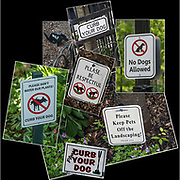 Montage of seven curb your dog signs.<br /> <br /> 1) Dog Sign - Curb Your Dog - GOR-103064-13<br /> 2) Dog Sign - No Dogs - GOR-1533398-cR18<br /> 3) Dog Sign - Curb Your Dog - GOR-151688-18<br /> 4) Dog Sign - Please Be Respectful - GOR-151350-cR18<br /> 5) Dog Sign - No Dogs Allowed - GOR-150867-18<br /> 6) Dog Sign - Curb Your Dog - GOR-154361-18<br /> 7)Dog Sign - Keep Pets Off Landscaping - GOR-151995-18