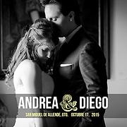 Boda Andrea + Diego